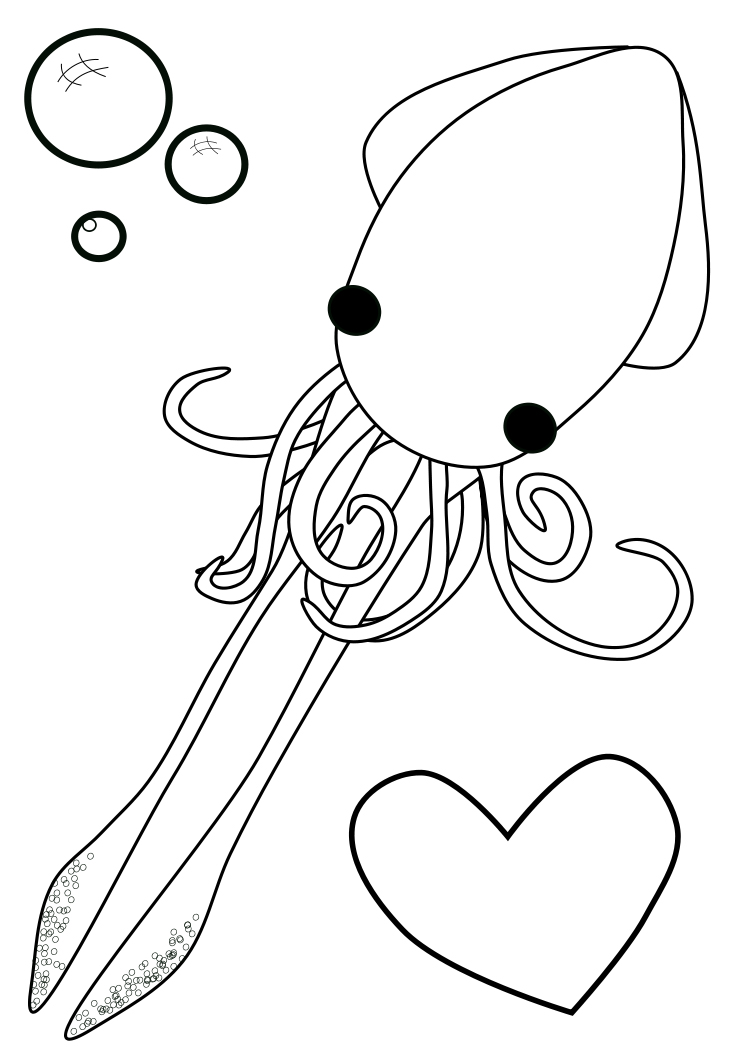 Back gt Gallery For Cute Squid Drawing
